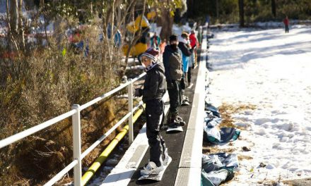 Skiers and boarders now welcome at Corin Forest