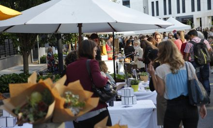 Night Market Canberra returns this week!