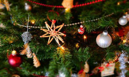 CHRISTMAS DAY AT VIKINGS