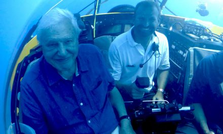 Dive into the deep with David Attenborough at NMA