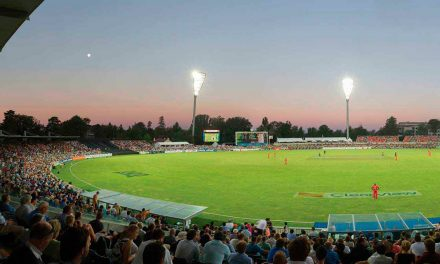 Canberra Cricket Lovers Unite!