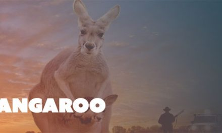 Kangaroo Screening and Q&A at Dendy Cinemas