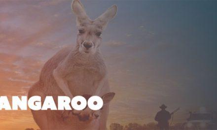 Kangaroo Screening and Q&A at Dendy Cinemas