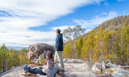 Best walking tracks in Canberra