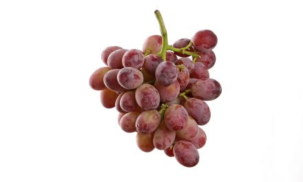 Guess the epic flavour of these grapes!