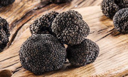 Idiot's Guide to Black Winter Truffle Season