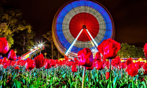 WIN a double pass to NightFest at Floriade!
