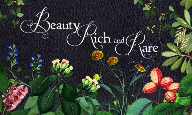 Review: Beauty Rich and Rare