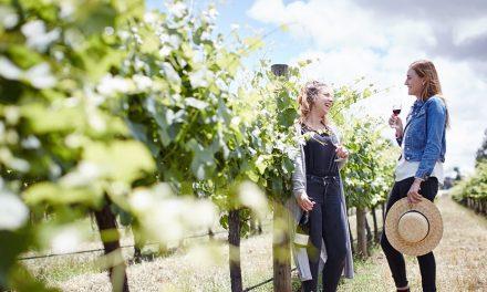 A sneak peek of your next gourmet wine escape