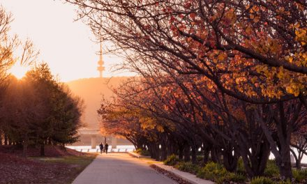 Canberra Getaway! Your Perfect 2-Day Itinerary